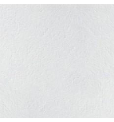 Стельова плита ARMSTRONG Retail 600х600х14мм microlook
